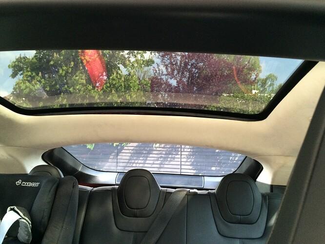 trunk closed.JPG