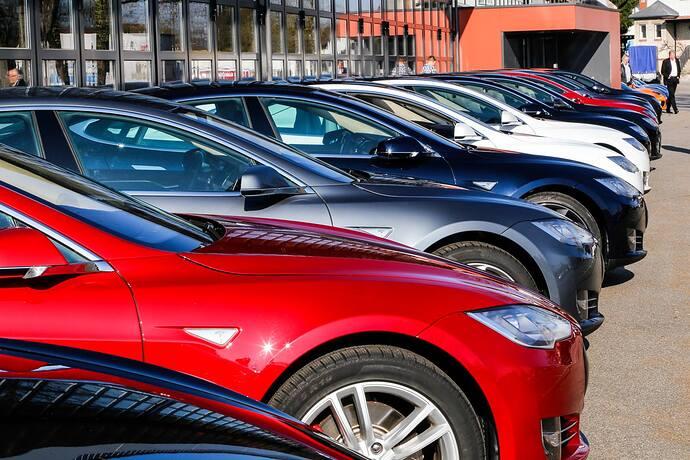 GV 2015 Teslaclub -2.jpg