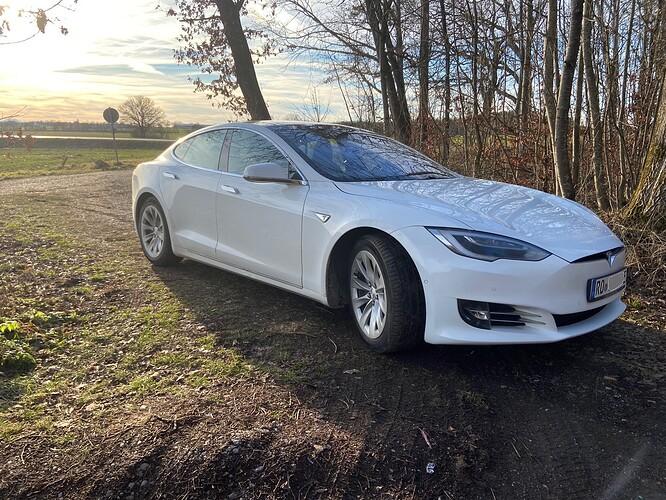 Tesla_Model_S90D_Brego.jpeg